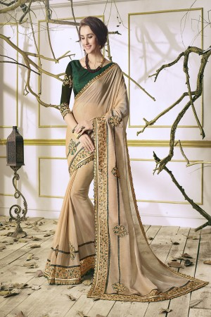 Bewitching Chiku Georgette & Chiffon Heavy Embroidery Panel Work with Lace Border Saree