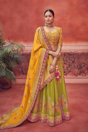 Light Green Banarasi Lehenga Choli