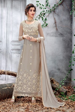 Light Grey Butterfly Net Salwar Kameez