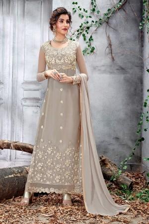 Light Grey Butterfly Net Salwar Kameez