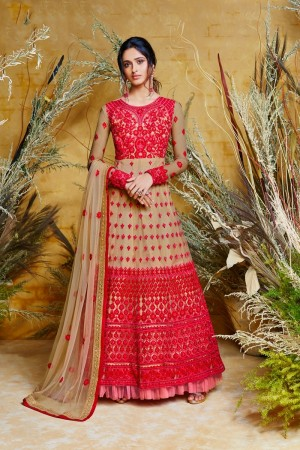 Chiku Butterfly Net Anarkali Suit
