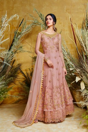 Gajari Butterfly Net Anarkali Suit