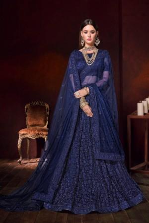 Blue Net Lehenga Choli