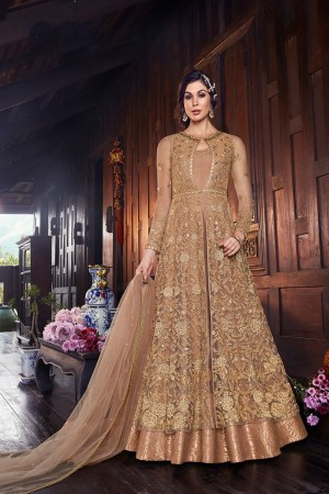 Light Brown Butterfly Net Salwar Kameez