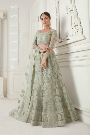 Mint Green Net Lehenga Choli