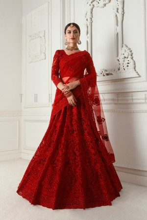Red Net Lehenga Choli