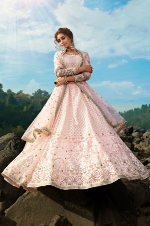Light Pink Soft Net Lehenga Choli