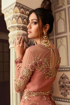 Brown Rangoli & Butterfly Net Salwar Kameez