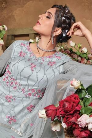Grey Butterfly Net Salwar Kameez