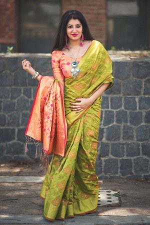 Dreamy Bird green Weaving Patola Silk Saree