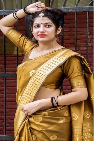Mustard Banarasi Silk Patola Saree