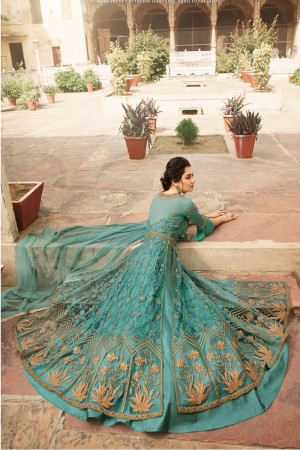 Sea Blue Net Salwar Kameez