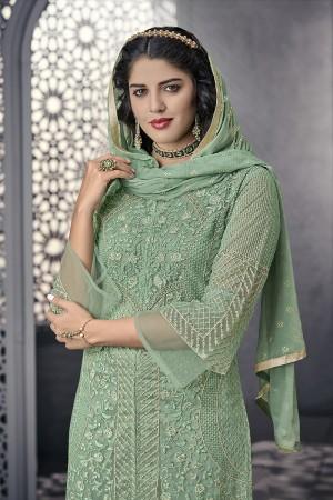 Mint Net Salwar Kameez