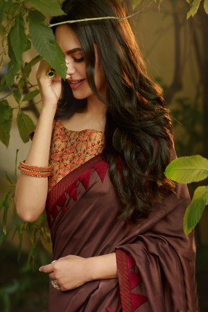 Brown Fancy Fabric Saree with Blouse
