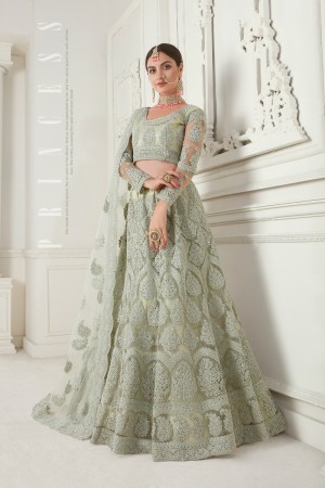 Mint Green Net Lehenga Choli