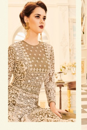Light Brown Net Salwar Kameez