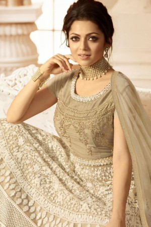 Light Brown Heavy Butterfly Net  Anarkali Suit